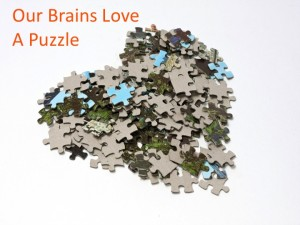 our_brains_love_puzzle