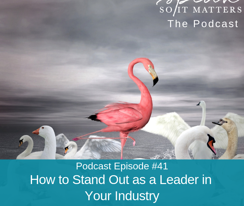 Ep #41: How to Stand Out as a Leader in Your Industry